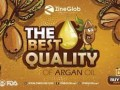 zineglob-producer-and-exporter-of-argan-oil-small-2