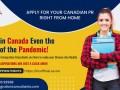 canada-immigration-consultant-in-mumbai-the-immigration-consultants-small-0